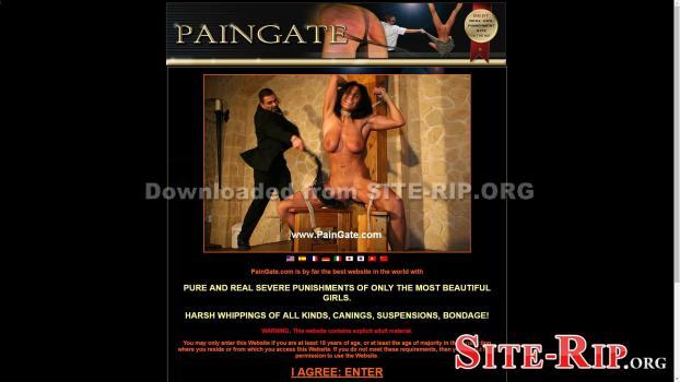 33584507_paingate