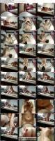 33616172_jun-7170_perfekter_verliebter_sex_s.jpg