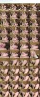 37040351_candymonroe_black-meat-in-white-pussy_s.jpg