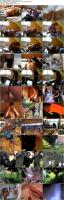34511305_nessadevilcollection_home_video_-5-_s.jpg